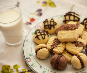 aww, biscuit, and biscuits image