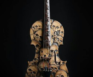 musical instrument, skull, and violin image