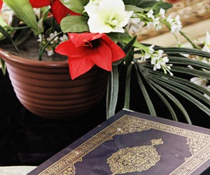 admire, allah, and Best image