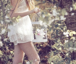 dress, nature, and cute image