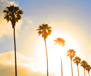 sun, summer, and california image