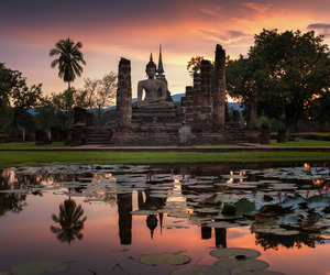 asia, lotus, and sunset image