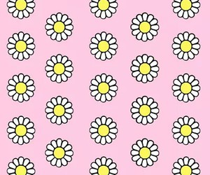 pink, background, and flowers image