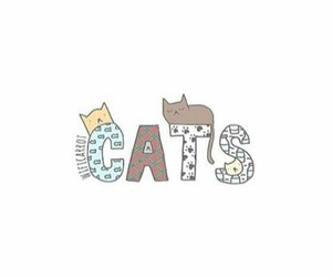 cats and overlay image