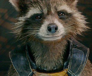 rocket, guardians of the galaxy, and Marvel image
