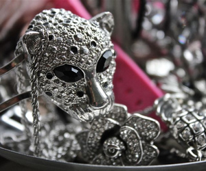 jewelry, lion, and ring image