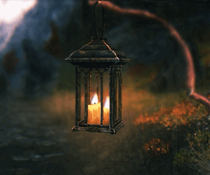 nature, candle, and gif image