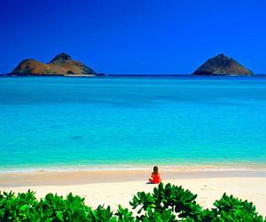 beach, hawaii, and sea image