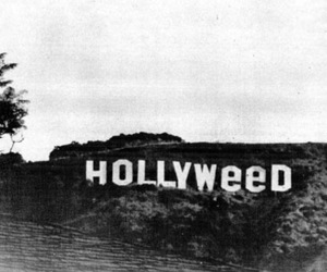 weed, hollywood, and hollyweed image