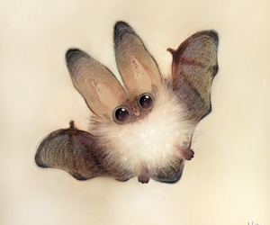bat, animal, and art image