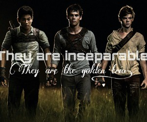 famous, movie, and the maze runner image
