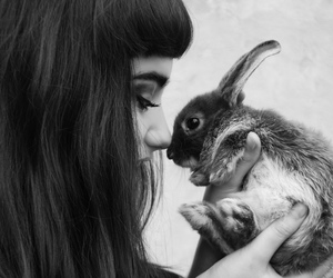 rabbit, girl, and black and white image