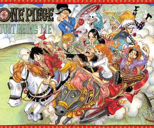 one piece <3 image