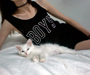 cat, girl, and boys image