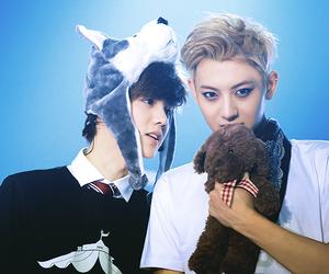 tao, luhan, and exo image