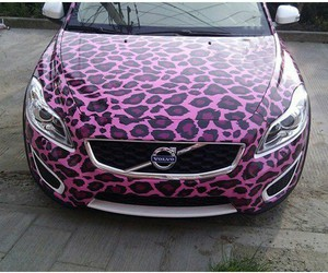 girly, leopard, and pink image