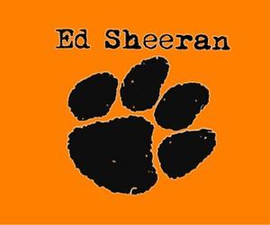 music, ed sheeran, and sheerio image