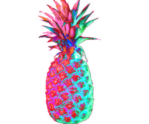 cool, pineapple, and tumblr image