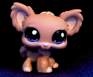 chihuahua and littlest pet shop image