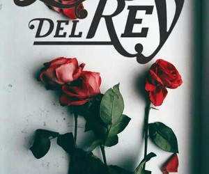 lana del rey and roses image