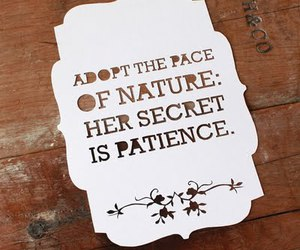 nature, papercutting, and quote image