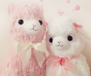 kawaii, alpacas, and pink image