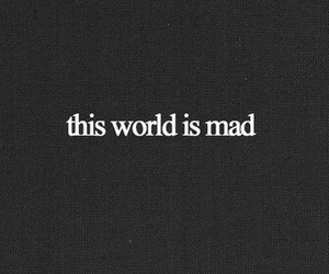 mad, world, and quote image