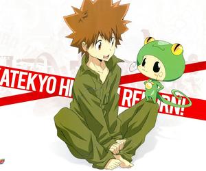 khr and katekyou hitman reborn image