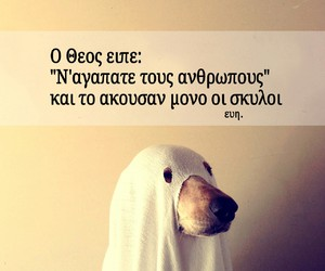 dog, god, and quotes image