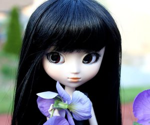 doll and pullip dolls image