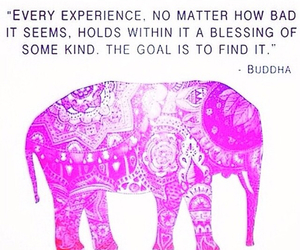quotes and Buddha image