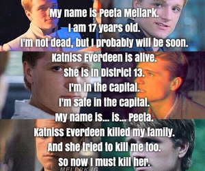 peeta mellark, the hunger games, and hunger games image