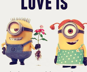 minions, love, and stupid image