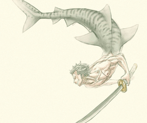 one piece, shark, and zoro image