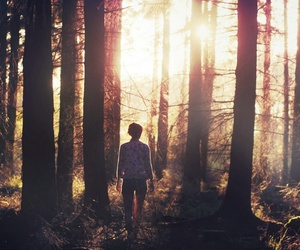 girl, forest, and sun image