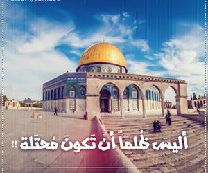 عربي, فلسطين, and القدس image