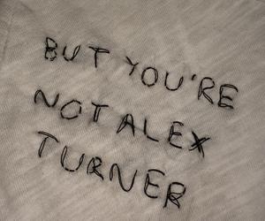 alex turner image