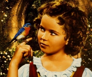blue bird, little girl, and shirley temple image