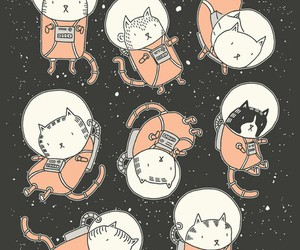 cats space lol stars image