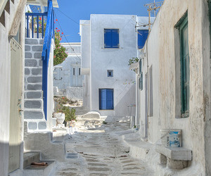 Greece, cat, and amazing image
