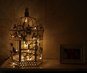light, cage, and bird image