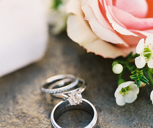 rose, rings, and wedding image