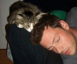 cat, cory monteith, and glee image