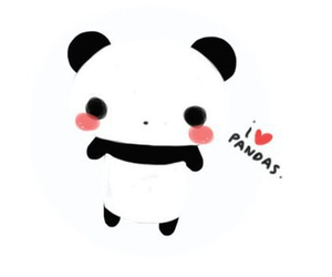 panda and kawaii image