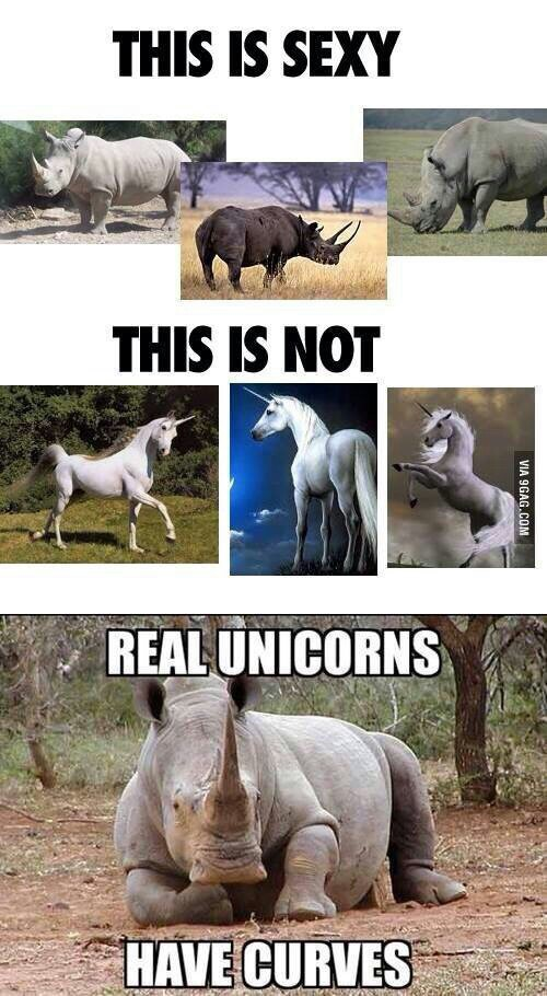 unicorn, curves, and funny image