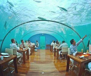 restaurant and underwater image