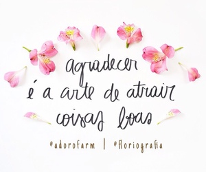 quotes, agradecer, and goodvibes image
