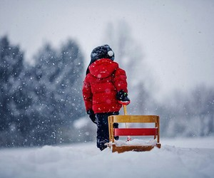 red, snow, and winter image