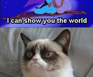funny, grumpy cat, and disney image