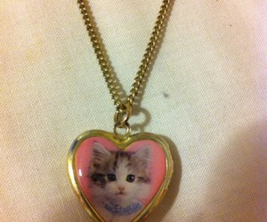 cat, necklace, and cute image